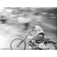 Motocross na granicy Gdyni i Sopotu. Archiwum rodziny Gałeckich, Sopot 1968 r.