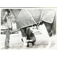 Wojciech Kowerski robi okład koniowi po crossie. Obok stoi Adam Prokulewicz, 1979 r.