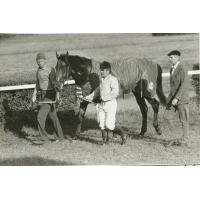 Koń po wyścigu prowadzony na dekorację, lata 60. XX w.